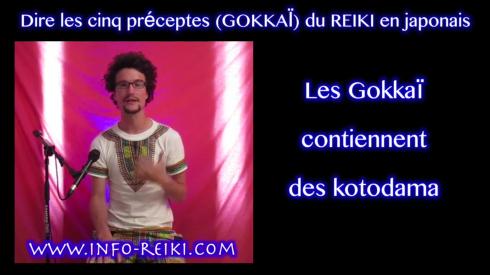 Gokaï